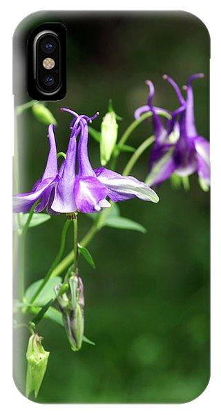Aquilegia iPhone Case - Columbine Flowers (aquilegia Yabeana) by Brian Gadsby/science Photo Library