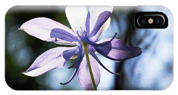 Aquilegia iPhone Case - Columbine Wildflower, Colorado, Usa by Piperanne Worcester