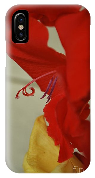 Come Hither Red IPhone Case