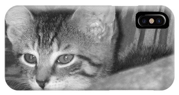 iPhone Case - Comfy Kitten by Pharris Art