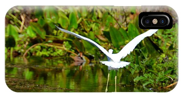 Wakulla iPhone Case - Coming In For A Landing by Carla Parris