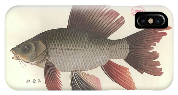 Common Carp Phone Case by Natural History Museum, London