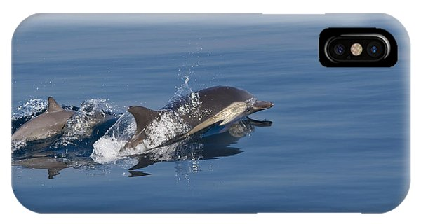 IPhone Case featuring the photograph Common Dolphin - Dauphin Commun by Nature and Wildlife Photography