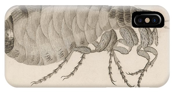 Common Flea (pulex)           Date 1810 Phone Case by Mary Evans Picture Library