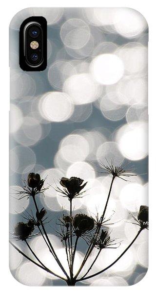 Common Hogweed (heracleum Sphondylium) Phone Case by Dr. John Brackenbury/science Photo Library