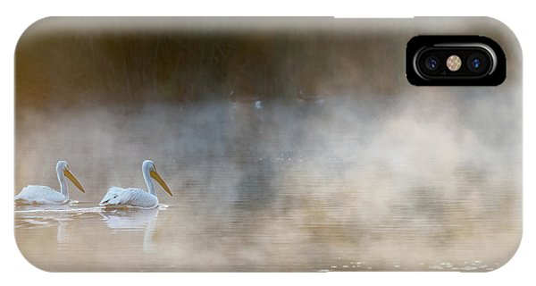 Pelican iPhone Case - Companions by Majestic Moments Photography,