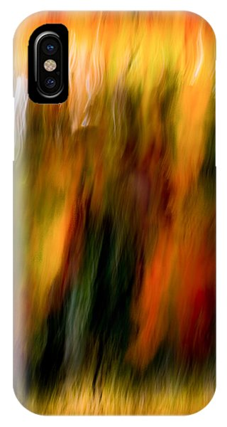 Condiments IPhone Case