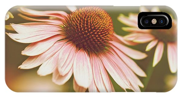 Cone Flower 3 IPhone Case