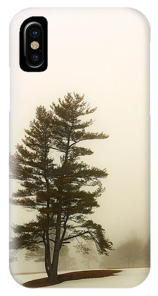 Coniferous Tree In Winter IPhone Case