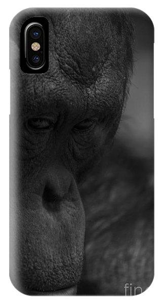 Contemplating Orangutan IPhone Case