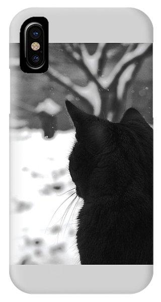 Contemplating Winter IPhone Case