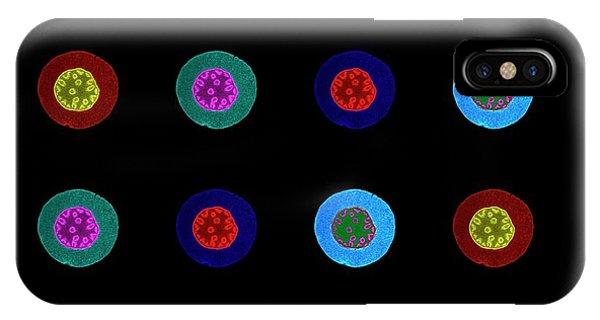 Monocotyledon iPhone Case - Convallaria Roots by Amanda Goncalves, Microscopy Core Facility, Vib Gent