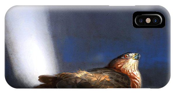Hawk iPhone Case - Coopers Hawk by Aaron Blaise