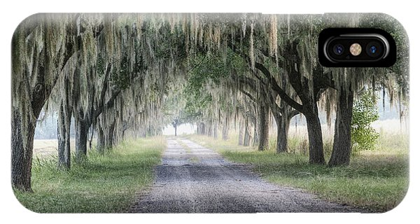 Coosaw Fog Avenue Of Oaks IPhone Case