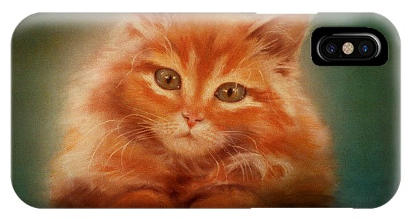 Copper-colored Kitty IPhone Case