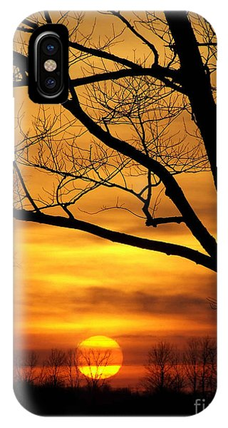 Copper Tones Ll IPhone Case