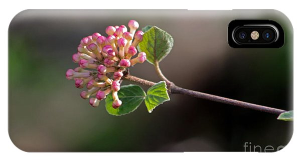 Coral Bell Blossom IPhone Case