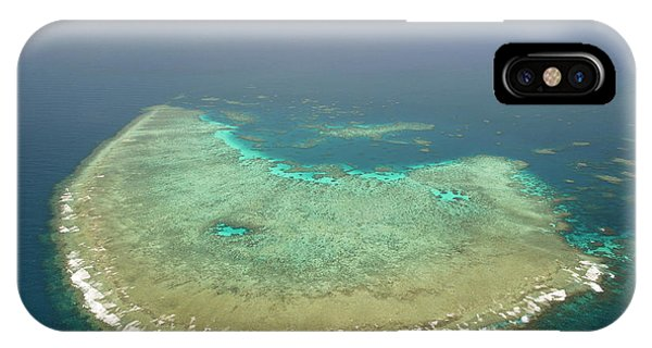 Barrier Reef iPhone Case - Coral Reef by Louise Murray