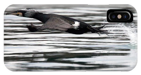 Cormorant Taking Off From The Sea IPhone Case