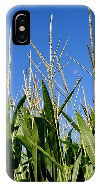 Corn Tassels And Moon IPhone Case