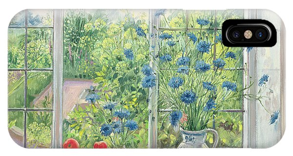 Window Pane iPhone Case - Cornflowers And Kitchen Garden by Timothy Easton