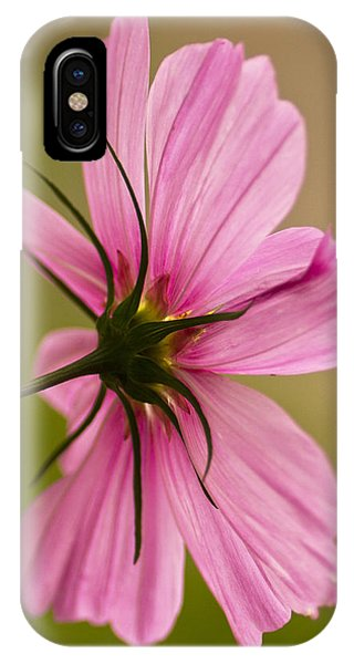 Cosmos In Pink IPhone Case