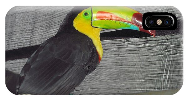 Costa Rican Toucan IPhone Case