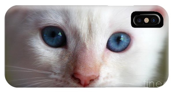 iPhone Case - Cotton by Sandra Bauser Digital Art