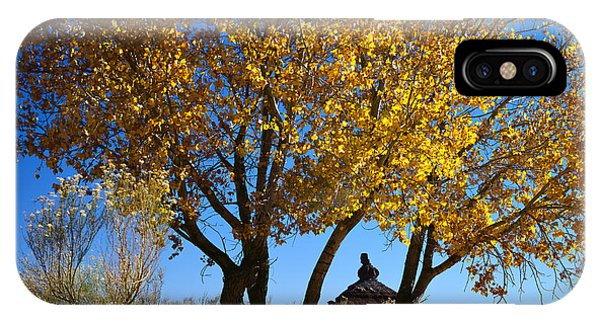 Cottonwood And Nipple Butte IPhone Case