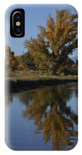 Cottonwood Trees And Reflections IPhone Case