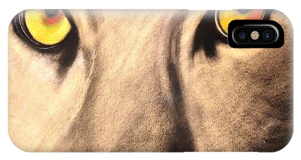 Cougar Eyes IPhone Case