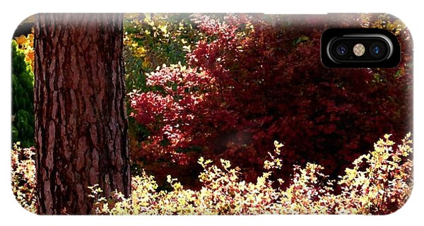 Shrub iPhone Case - Country Color 28 by Will Borden