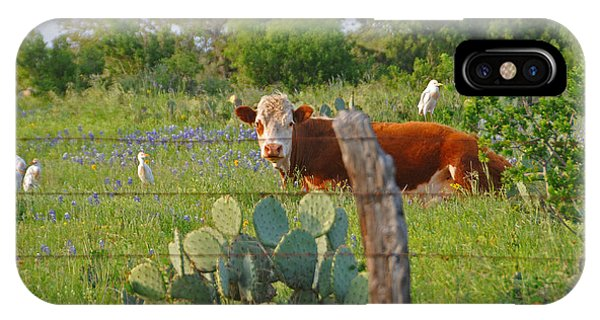 Country Friends IPhone Case