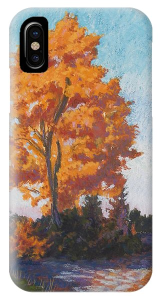 Country Road Cold Fall Morning IPhone Case