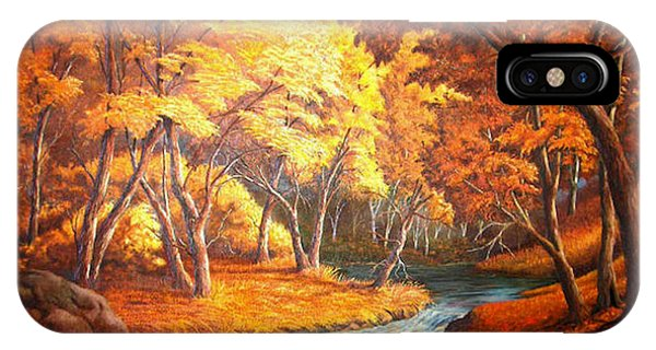 Country Stream In The Fall IPhone Case