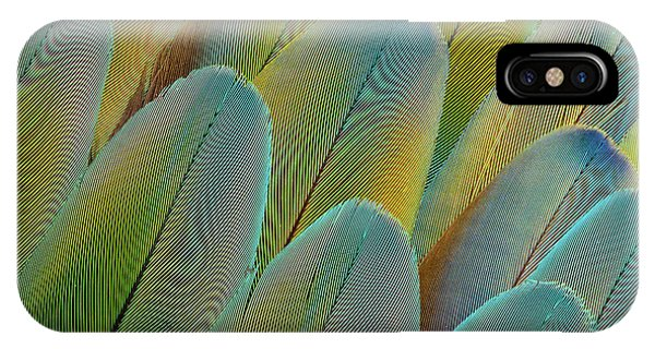 Macaw iPhone Case - Covert Wing Feathers Of The Camelot by Darrell Gulin