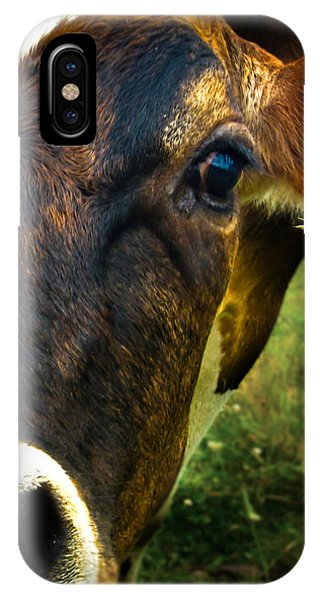 IPhone Case featuring the photograph Cow Eating Grass by Bob Orsillo