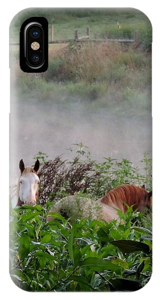 Cowboy And Pheonix At Blue Horse Rescue IPhone Case