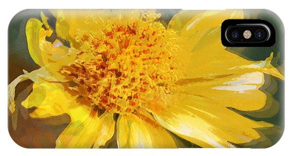Cowpen Daisy No. 4 IPhone Case