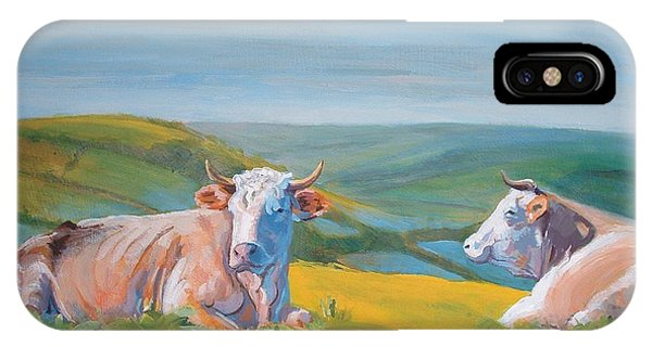 Cows Lying Down Painting IPhone Case