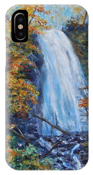 Crab Apple Falls IPhone Case
