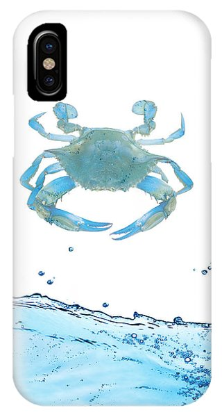 Dive iPhone Case - Crab Strolling Around by Art Spectrum