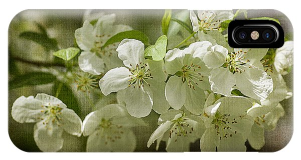 Crabapple Blossoms 4 With Textures IPhone Case