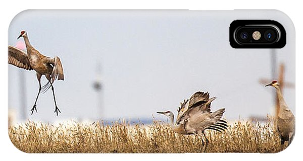 Crane Dance IPhone Case