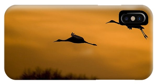 Cranes At Sunset IPhone Case