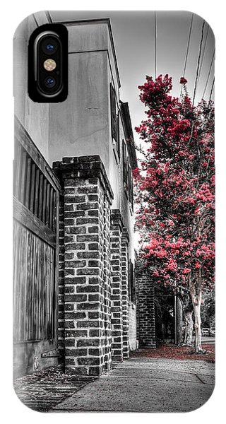 Crape Myrtles In Historic Downtown Charleston 2 IPhone Case