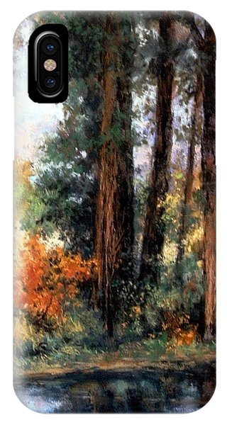 iPhone Case - Creekside No 2 by Jim Gola