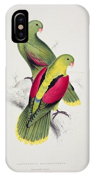 Audubon iPhone X Case - Crimson Winged Parakeet by Edward Lear