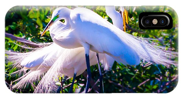 Criss-cross Egrets IPhone Case
