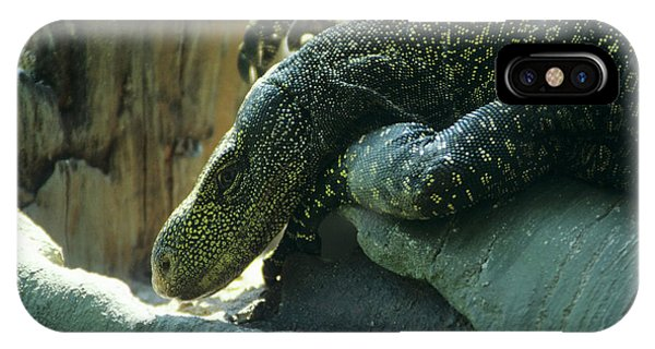 Crocodile Monitor Lizard Phone Case by Sally Mccrae Kuyper/science Photo Library